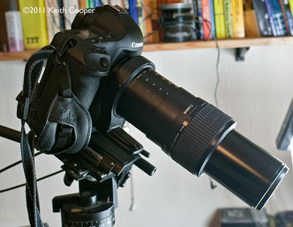 mp-e65 at x5 magnification